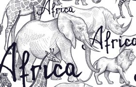 非洲野生动物主题AI模板 矢量图动物园矢量